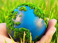 ekologiya